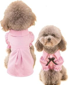 Cute Pink Checkered Dog Shirt Blouse - Just Pink About It - Find cute PINK pet fashion items. PINK pet sweaters, coats, shirts, hoodies and more. Pet Sweaters, Puppy Treats, Dog Clothes Patterns, Pet Day, Pet Fashion, Estilo Fashion, Dog Wear, Dog Pattern, Dog Dresses