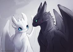 """I'm really excited about """"How to train your Dragon"""" 3 so I drew toothless and the new white night fury that got announced :D"""