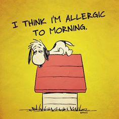 #Morning #Tired #Snoopy #Sleep #Doghouse #Allergies #Funny #Peanuts - @Linda Seal- #webstagram