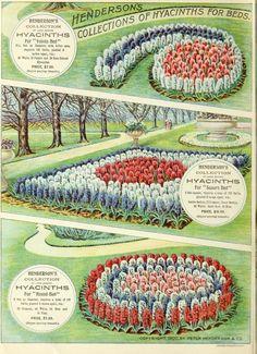 1900 - Autumn bulbs catalogue : - Biodiversity Heritage Library. #BHLinbloom