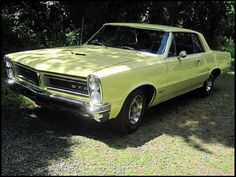 1965 GTO...I had a couple of boyfriends with a GTO in the 1980's.