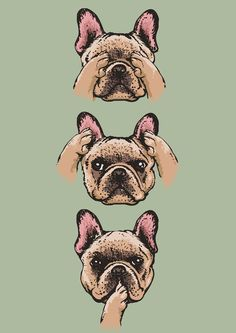 No Evil Frenchie Art Print Teacup French Bulldogs, French Bulldog Art, Animals And Pets, Baby Animals, Cute Animals, Bulldog Pics, French Dogs, Dog Pictures, Fur Babies