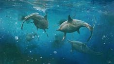 Alien Worlds, Prehistoric Animals, Like Animals, Prehistory, Free Prints, Reptiles, Fossil, Whale, Painting