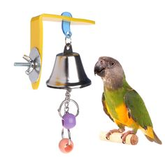 Parrot Bell Toys Birds Chewing Hanging Swing Cage Toy Bite Accessories Parakeet Beads Cockatiel Play Toy Pet Bird Supplies Type: Birds Brand Name: OOTDTY Material: Metal Cockatiel Toys, Bird Barn, Wood Bird, Barn Owls, Bird Toys, Cat Toys, Small Pet Supplies, Parrot Toys, Parrots