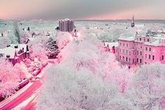 pink white city town