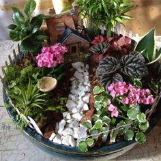 Fairy garden.. mini jardim