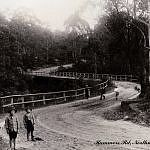 Hammers Rd,Northmead in western Sydney in Newcastle, Old Photos, Sydney, Sailing, Australia, South Wales, Park, History, Interesting Stuff