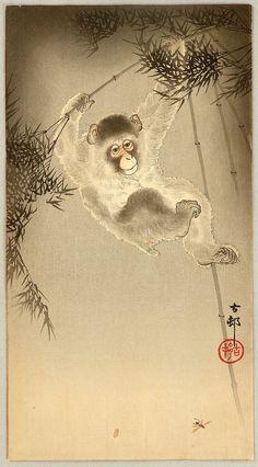 Ohara Koson: Monkey - Ca. Japanese Monkey, Japanese Animals, Japanese Art Prints, Japanese Drawings, Japan Painting, Ink Painting, Ohara Koson, Korean Painting, Monkey Art