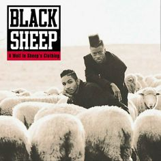 Congratulations if not we would  @Regrann_App from @blacksheepdres -  Today... A Wolf In Sheeps Clothing  is 25 years old... just wow!! That is amazing to me... maybe my friends at @okayplayer and @ambrosia4heads would like to premiere the live version of The Choice Is Yours (for sale on itunes and such) at the top of the week... its the perfect toast to a special moment.. #BlackSheep #AWISC #HipHop#MMV #BIGLIFE - #regrann