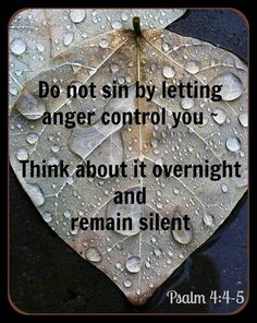 We are allowed to be angry, but not to allow anger to move us or control us. In a things, pray.