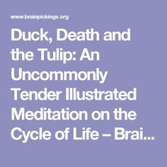 Duck, Death and the Tulip: An Uncommonly Tender Illustrated Meditation on the Cycle of Life – Brain Pickings