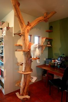 Knight-Cat-Tree.jpg (376×564)