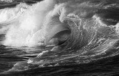 Nature by Romuald Pliquet - Photo 172138165 - 500px