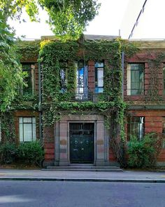 Heart eyes on for this leafy Melbourne building.