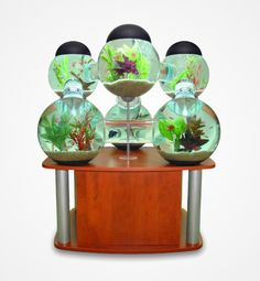 Give your home some real character and show off your fish with the Labyrinth Aquarium. This Labyrinth Aquarium is designed for tropical fish and includes lights, filters, air pumps, cleaning supplies, and makes a cool gift idea for any home. Unique Fish Tanks, Cool Fish Tanks, Aquarium Design, Aquarium Ideas, Aquarium Setup, Fish Tank Design, Indoor Water Features, Amazing Aquariums, Mid Century Modern Sofa
