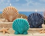 Ocean mist scented scalloped seashell candles