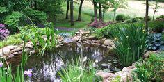 Japanese Gardens Pond Waterfalls | Waterfall Garden