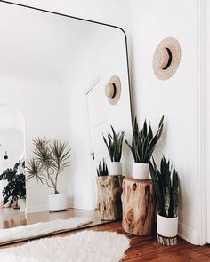 Make small spaces seem larger with a giant mirror. This idea will evolve any room into a beautiful clean space. Make small spaces seem larger with a giant mirror. This idea will evolve any room into a beautiful clean space. Decor Room, Decoration Bedroom, Diy Home Decor, Bedroom Plants Decor, Home Ideas Decoration, Home Decorations, Travel Room Decor, Plant Rooms, Earthy Home Decor