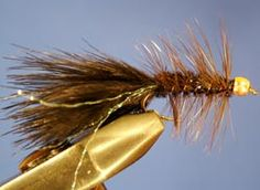 The Bead Head Wooly Bugger - this fly is an absolute must-have for fishing in the Catskill streams - the Beaverkill, the Willowemoc and the Esopus.  Be sure to have black, green and brown patterns.