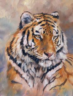 Tiger Print featuring the painting Amur Tiger by David Stribbling