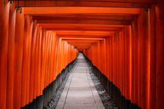 Check out my Kyoto Bucket List of The list includes best highlights of Kyoto from must see temples and shrines to matcha desserts. Here are 25 best things to do in Kyoto Takayama, Hiroshima, Yokohama, Osaka, Orange Architecture, Fushimi Inari Taisha, Road Pictures, Hiking Routes, Orange Wallpaper