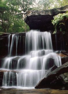 Somersby Falls in Brisbane Water National Park; 1 hr north of Sydney (Image: J Taunton/DECCW) Beautiful Park, Beautiful Places, Beautiful Pictures, Brisbane Water, Great Walks, Central Coast, Countries Of The World, Sydney, National Parks