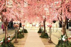 Decor wedding by suryo decor
