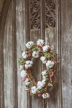 Freshly Picked Cotton