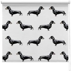 1000 Images About Printed Picture Roller Blinds On