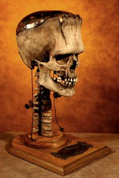"Thomas Kuebler The Skull of Frankenstein. though it should be called ""The Skull of Frankensteins Monster"" Skull Reference, Reference Images, Frankenstein's Monster, Classic Monsters, Skull And Bones, Skull Art, Macabre, Dark Art, Crane"