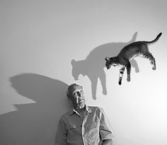 in love with this one. the shadow of the cat is hysterical.