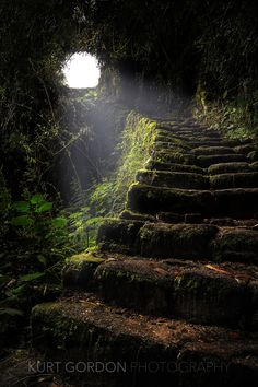 Stairway to Heaven. Passage on the Inca Trail leading to Machu Picchu, Peru. Beautiful Places, Beautiful Pictures, Beautiful Stairs, Beautiful Beautiful, Beautiful Scenery, Nature Pictures, Amazing Places, Animal Pictures, Stairway To Heaven