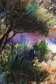 Les plus beaux jardins arides
