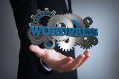 Wordpress Website Development, Design Creation, Wordpress Support, Website Maintenance, Website Web, Drupal, Premium Wordpress Themes, Wordpress Plugins, Design Development