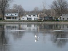 Livonia, NY   ... of Livonia, NY - Pictures and Photo Gallery for Livonia, New York