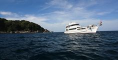 Get up close with Similan islands lievaboard trips. Similan Dive Center is offering liveaboard trips to the best dive sites in the Andaman sea : Richelieu rock, Koh Bon, Koh ...