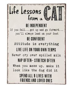 'Life Lessons From A Cat' Iron Wall Décor