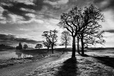 Winter Morning Shadows / Maynooth Print by Barry O Carroll