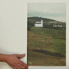 Publications: Desene pentru Herina / Stefan Caltia
