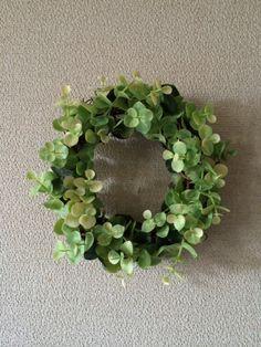 """PLANTS"" ユーカリのミニリース"