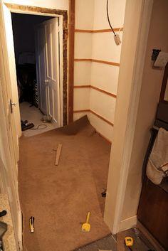 carpet trimmed
