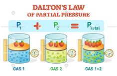 Dalton's law, chemical physics equation example diagram Dalton's law, information poster with partial with pressure Force And Pressure, Teaching Science, Science For Kids, Science And Nature, School Quotes For Students, Gas Laws Chemistry, Counseling Posters, Chemistry