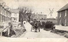 Lyminge Mill. 1905. | eBay