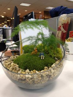 A terrarium peaceful place at the office. . . I'm not sure why but I'm intrigued by this