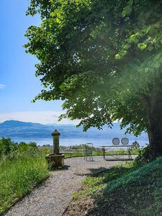 Felder, Switzerland, Spaces, Mountains, Nature, Travel, Day Trips, Good Night, Alps