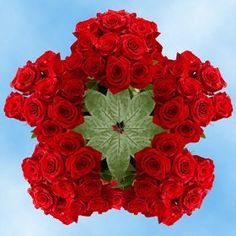 Buy Red Roses | 250 Fresh Cut Freedom Roses -- You can find more details by visiting the image link.