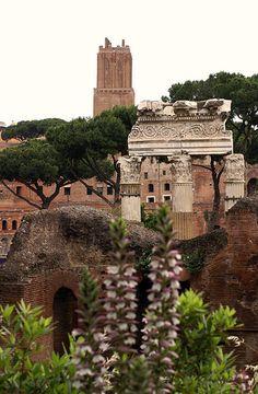 Rom, Via dei Fori Imperiali, Cäsar-Forum und Torre delle Milizie (Forum of Caesar and Torre delle Milizie)