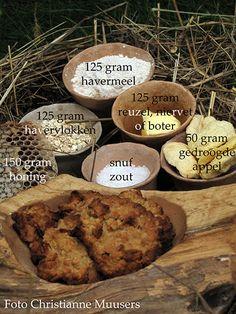 Een recept voor haverkoekjes uit de prehistorie