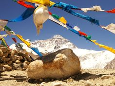 Tibet family adventure tour offers you the best local life experience and long-lasting memories of Tibet trip. Tibet Shambhala Adventure designs unique and authentic Tibet adventure tours. For more details, visit our website today! Adventure Tours, Family Adventure, Kailash Mansarovar, Travel Agency, Tibet, Trekking, Mount Everest, Tourism, Journey