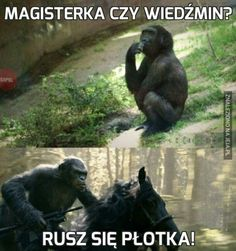 Polish Memes, The Witcher, Some Pictures, Funny Photos, Haha, Fangirl, Nerd, Geek Stuff, Jokes